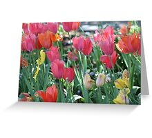 A Patch of Spring Greeting Card