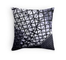 Tinted view Throw Pillow