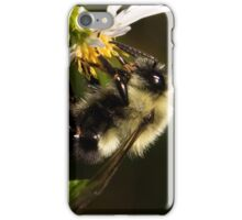 More Than A Treat iPhone Case/Skin
