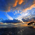 Nudgee Beach at sunrise. Brisbane, Queensland, Australia. by Ralph de Zilva