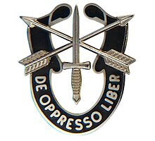 Special Forces insignia Photographic Print