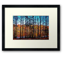 Thru Trees Landscape Framed Print