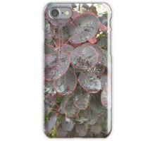 Pink lined Washington leaves  iPhone Case/Skin