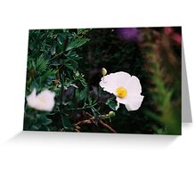 Simple Floral Photo Greeting Card