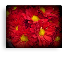 Orange Delight - Bright and Beautiful Spring Blossoms Canvas Print