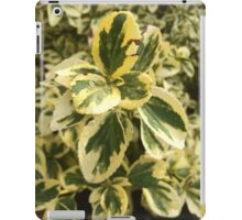 Green Washington leaves iPad Case/Skin