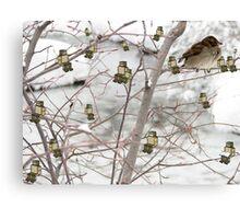 Winter Hangouts Canvas Print