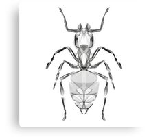 Ant Line Art Illustration Canvas Print