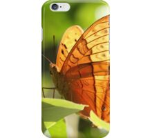 Orange Butterfly iPhone Case/Skin