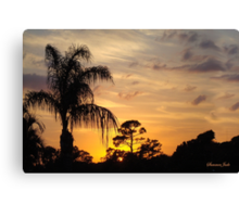 Fast Moving Clouds at Sunset Canvas Print