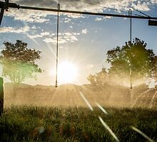 Irrigation Sunset 2 by Candice84