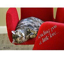 Kitty Cat Sending Love Photographic Print