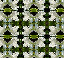 white Azalea pattern by Wieslaw Jan Syposz
