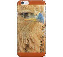 Tawny Eagle Anger - Wildlife Humor iPhone Case/Skin
