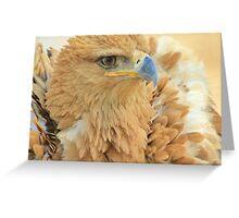 Tawny Eagle Anger - Wildlife Humor Greeting Card