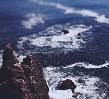 Blue Ocean by Leah Flores