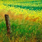 Rustic Boundary by sundawg7