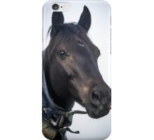 Prince the Pony iPhone Case/Skin