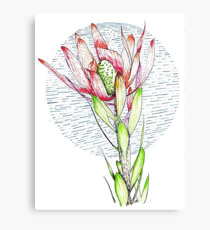 Flame Tongue Ink Drawing Canvas Print