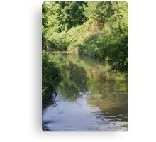 landscape river Canvas Print