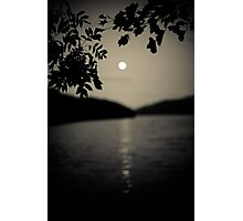 By the Light of the Silvery Moon Photographic Print