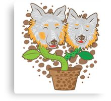 Potted Collie flowers (darker) Canvas Print