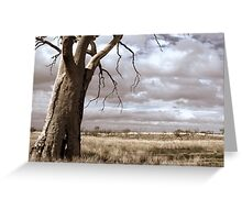 Just Down The Road From The Black Stump Greeting Card