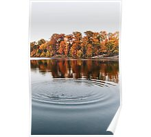 Fall Foliage at Lake  Poster