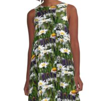 West Virginia Daisies  A-Line Dress
