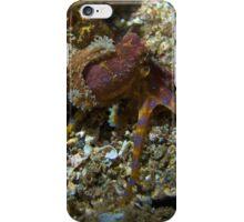 Blue ring octopus iPhone Case/Skin