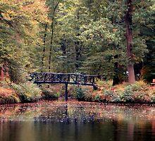 Autumn by ienemien