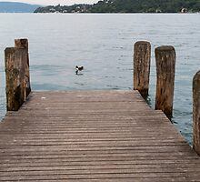 pier on the lake by spetenfia
