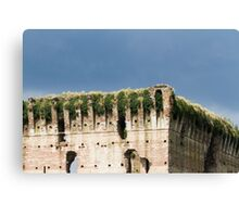 old castle Canvas Print