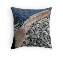 The Boat's Worst Enemy Throw Pillow