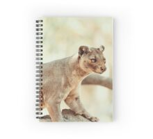Fossa (Cryptoprocta Ferox) Cat In Madagascar Spiral Notebook