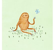 Sloth & Butterfly Photographic Print