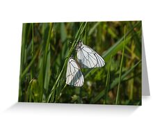 butterflies in love Greeting Card