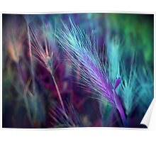 BLUE AND LILAC FEATHERY FERN  Poster