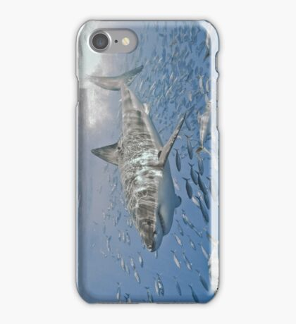 Afternoon Frolic (cases) iPhone Case/Skin