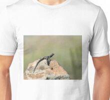 Starred Agama Lizard on Lesvos Unisex T-Shirt