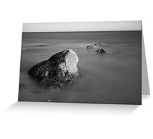 Allens Pond IX BW Greeting Card