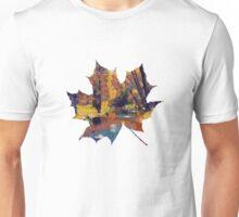 Autumn pond in the park Unisex T-Shirt