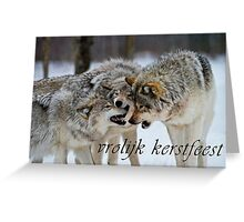 Timber Wolf Christmas Card - Dutch - 13 Greeting Card