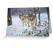 Timber Wolf Christmas Card - French - 15 Greeting Card