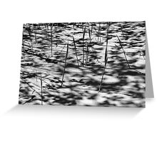 Beach Shadows BW Greeting Card