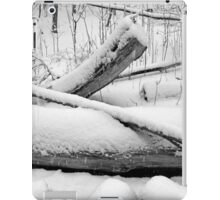 Breaching in a Snow Storm BW iPad Case/Skin