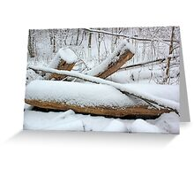 Breaching in a Snow Storm Greeting Card