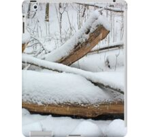 Breaching in a Snow Storm iPad Case/Skin