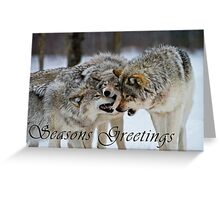 Timber Wolf Seasons Card - 13 Greeting Card