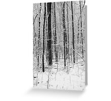 Forest in Snow Storm BW Greeting Card